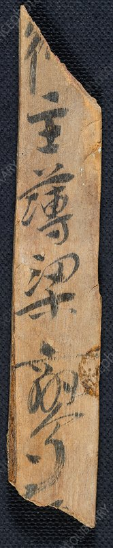 Chinese document on wood