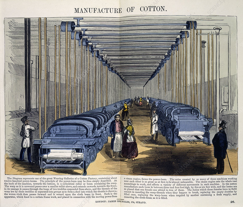 Manufacture of Cotton
