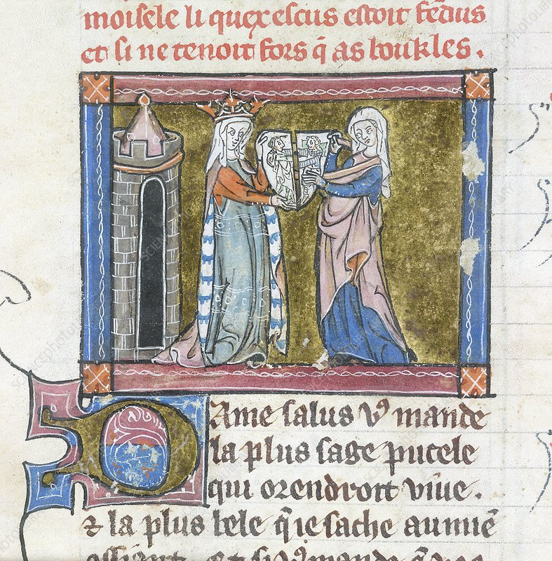 Guinevere with the cleft shield