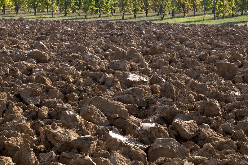 Ploughed clay field