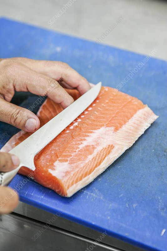 FRESH FARMED SALMON fillet