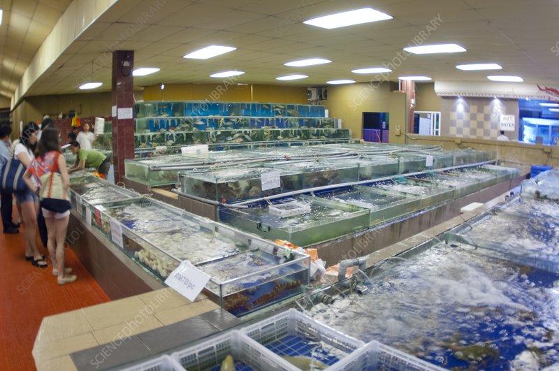 Fish restaurant in Borneo