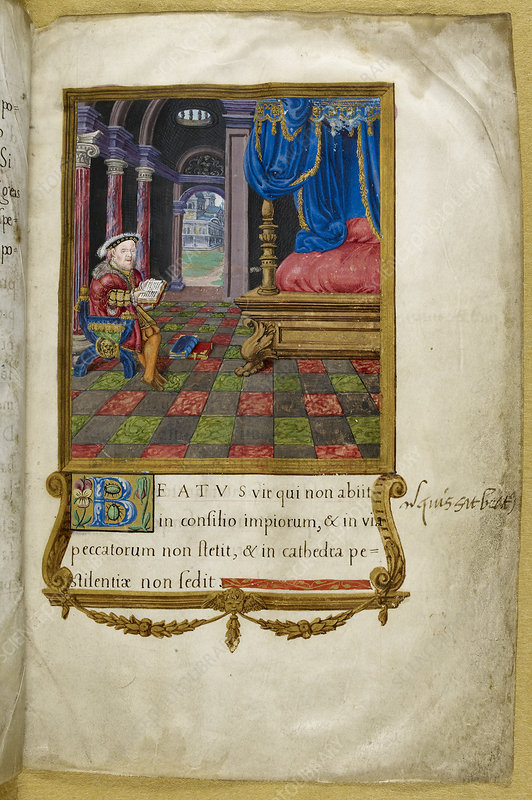 Henry VIII reading in chamber