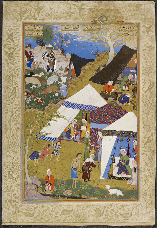 Majnun brought to Layla's tent