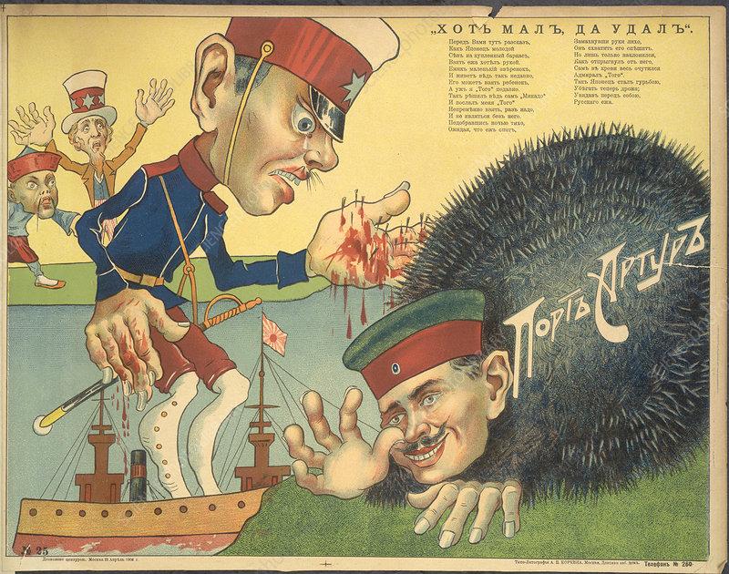 Russian hedgehog - Stock Image - C018/2213 - Science Photo ...