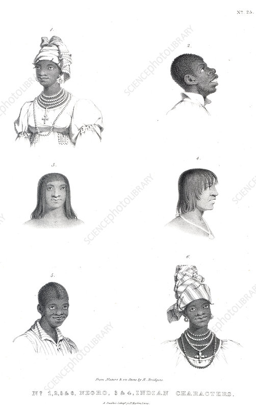 Negro and Indian heads