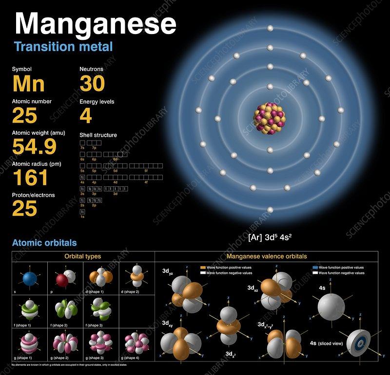 Manganese, atomic structure - Stock Image C018/3706 ...