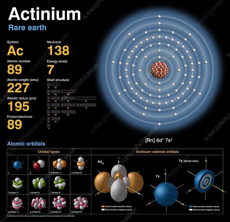 Actinium, atomic structure - Stock Image - C018/3770