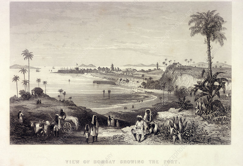 View of Bombay showing the Fort
