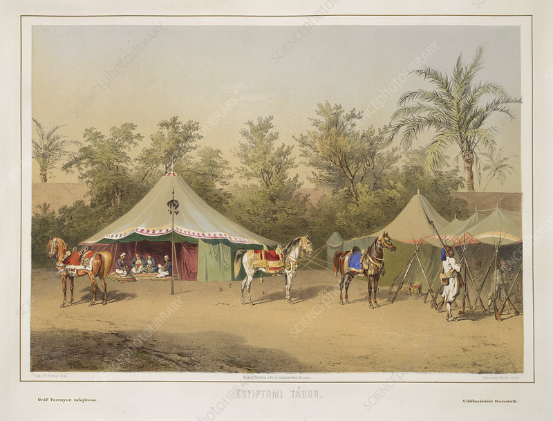 Camp in Egypt