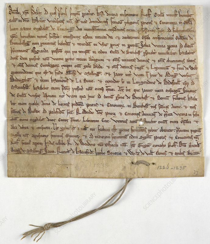 Charter of Brenchley, co. Kent