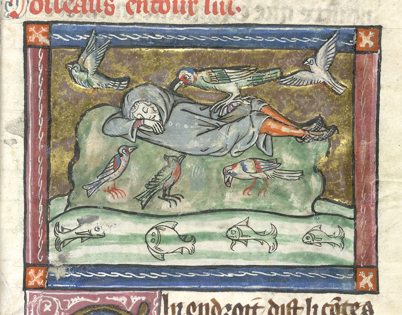 A sleeping man surrounded by birds.