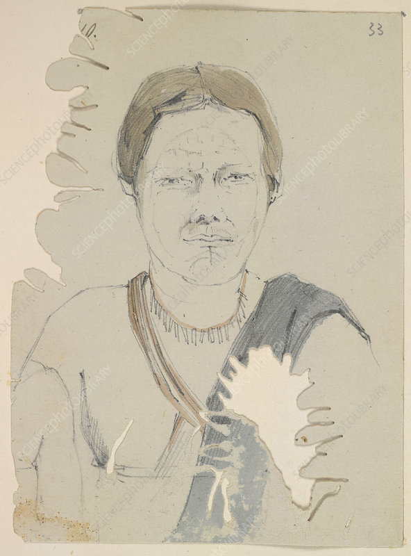 Portrait of an Amerindian