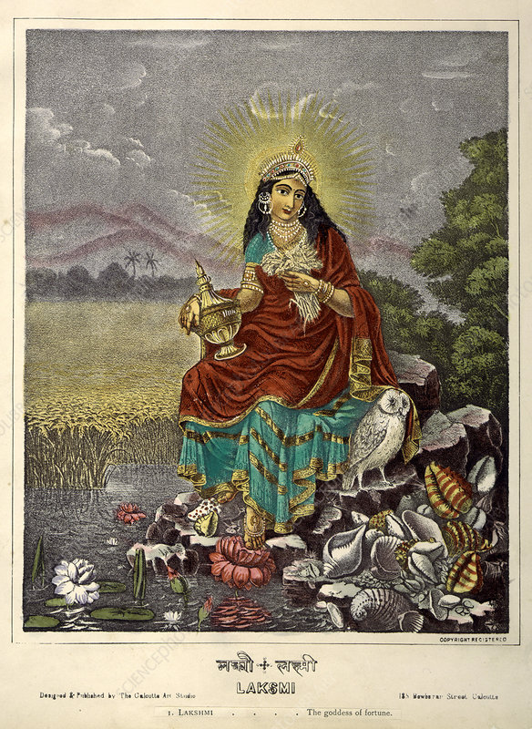 Lakshmi the Goddess of fortune