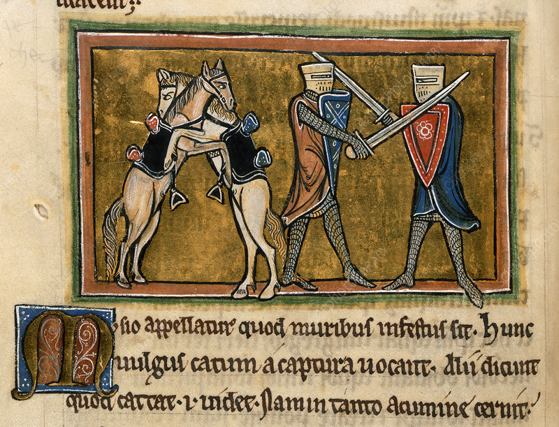Two horses and two knights fighting