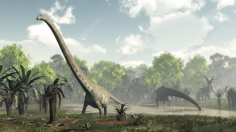 Mamenchisaurus dinosaurs, artwork