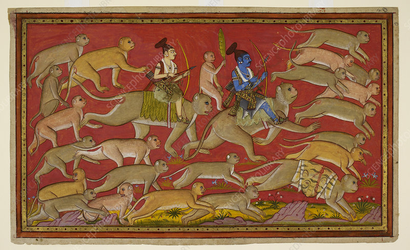 Rama sets out with the monkey army