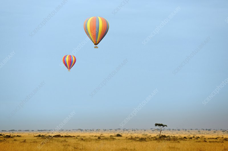 Hot air balloons over Masai Mara, Kenya