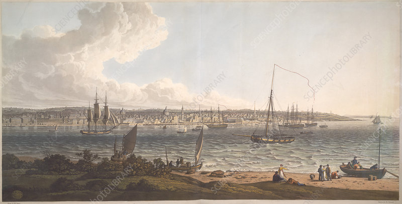 Town and Harbour of Liverpool