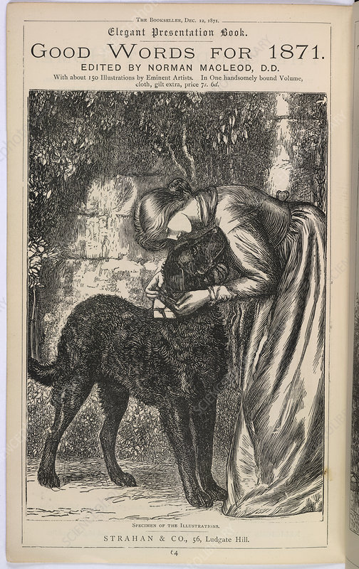 A young woman woman and her pet dog