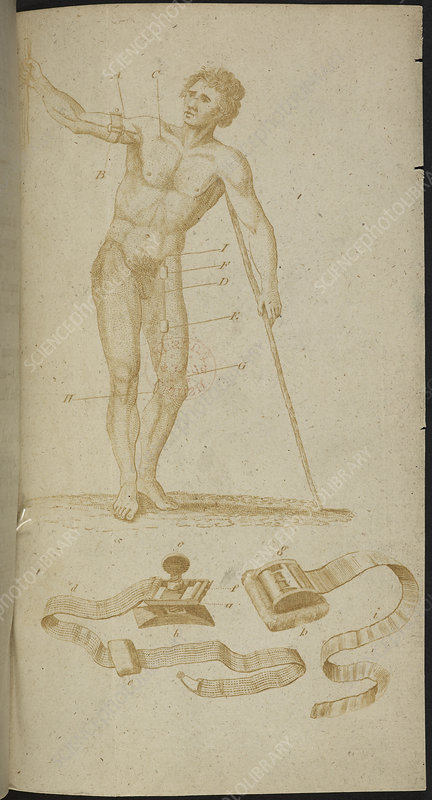 A medical diagram of a naked man