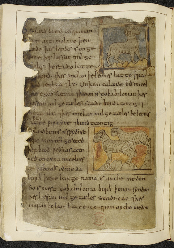Beowulf an epic poem