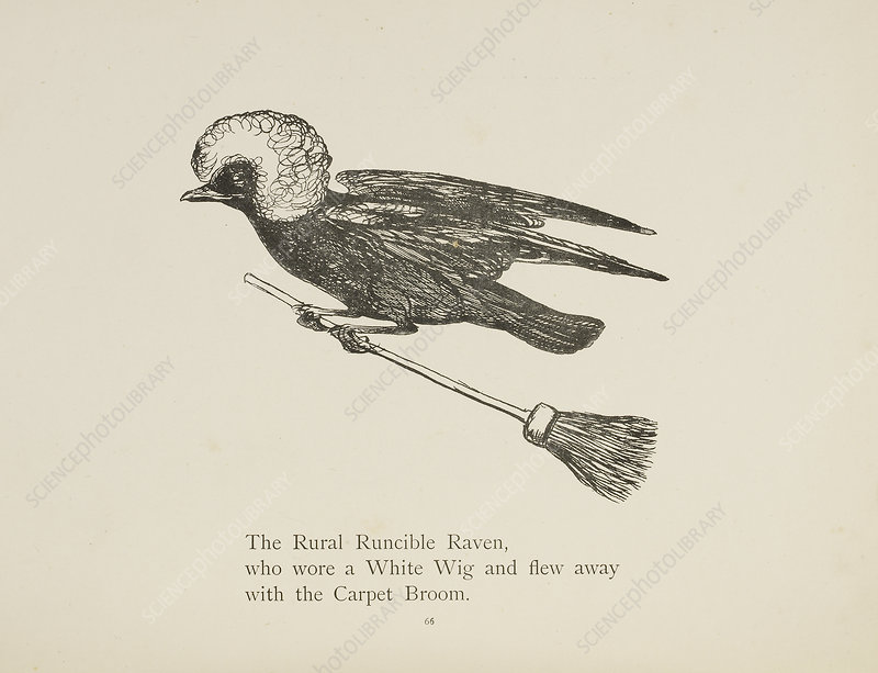 Raven flying on a broom