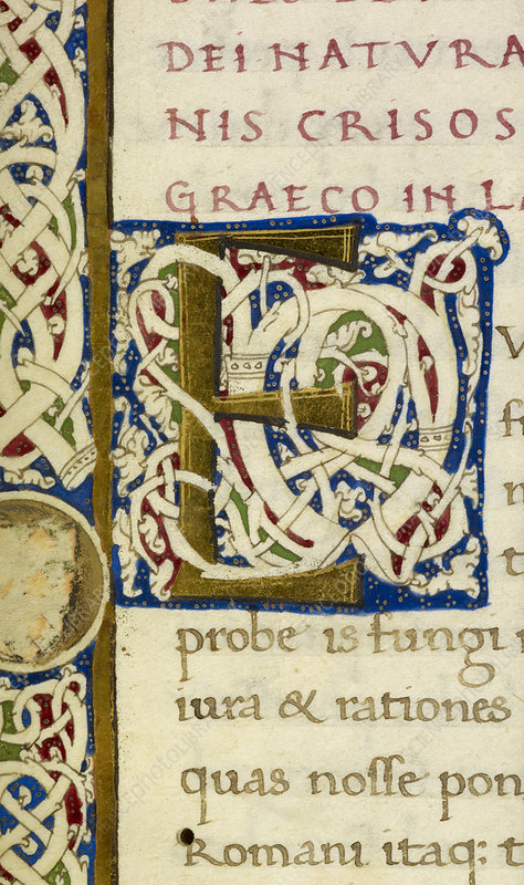 E From A Life of Christ Manuscript