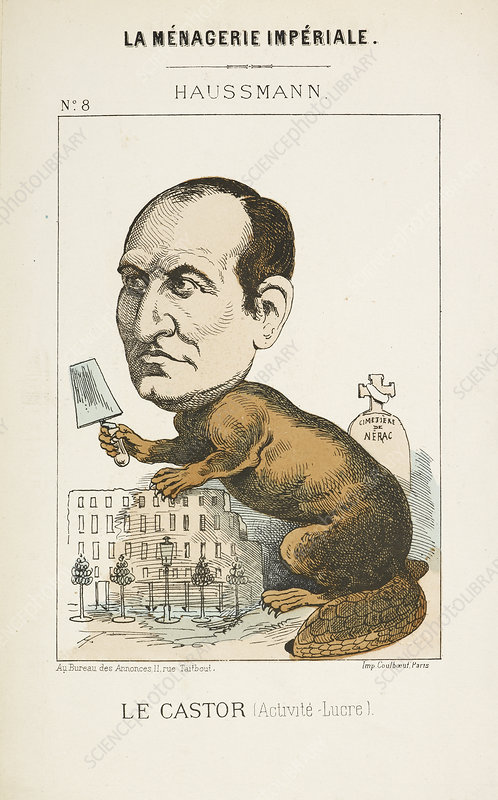 French Caricature - Le Castor