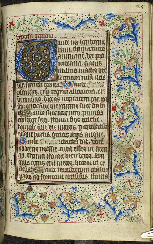 Book of Hours, Use of Sarum