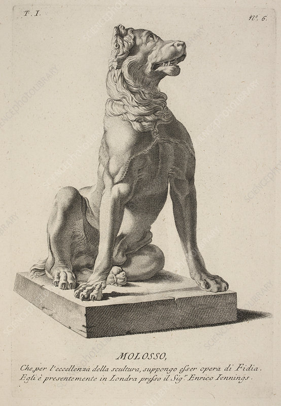 Classical statue of a dog