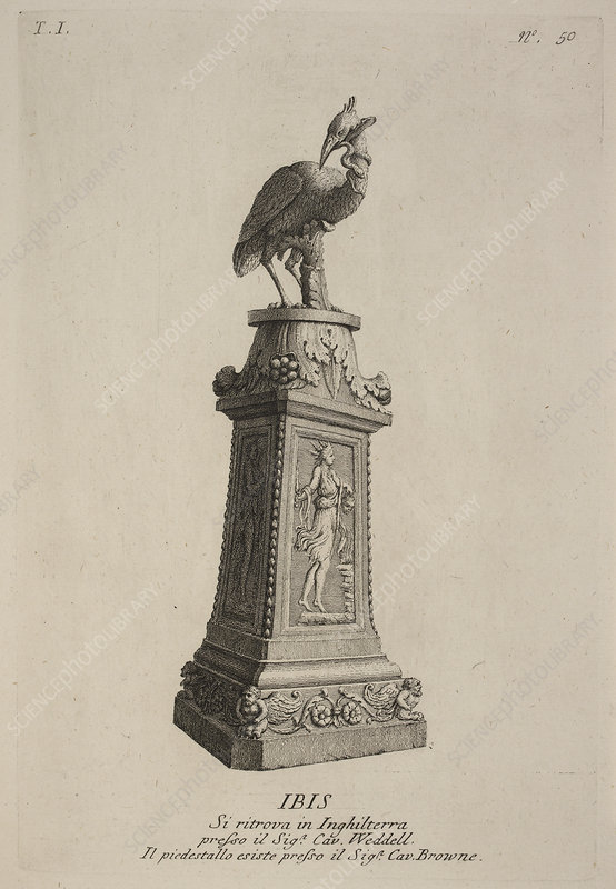Statue of mythical bird and Ibis
