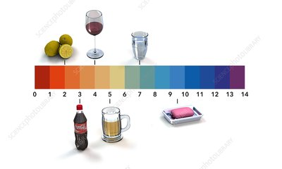 pH scale, artwork