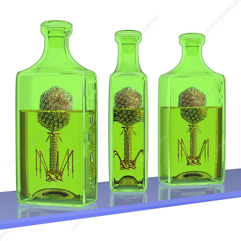 Phage therapy bottles, conceptual image