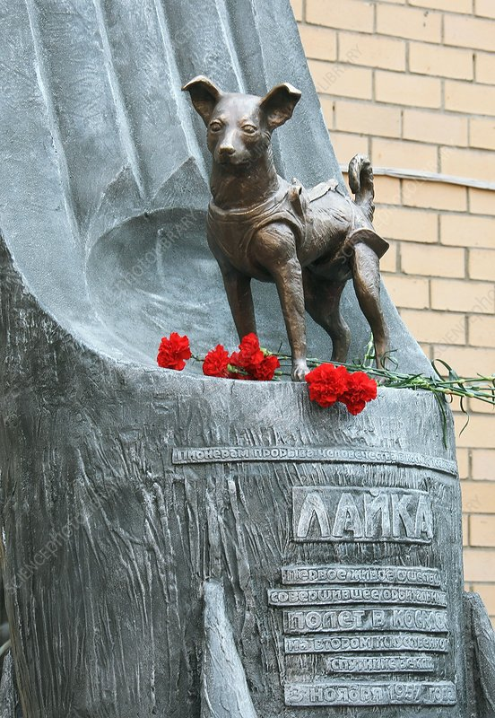 Monument to Laika the space dog, Moscow