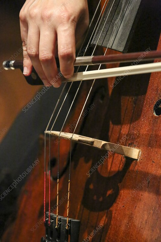 Close up of the cellist's hands