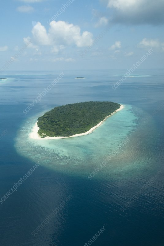 Aerial of Finolhas Island in the Maldives