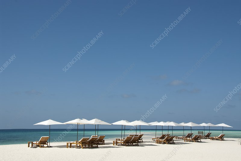 Chairs and umbrellas on the beach