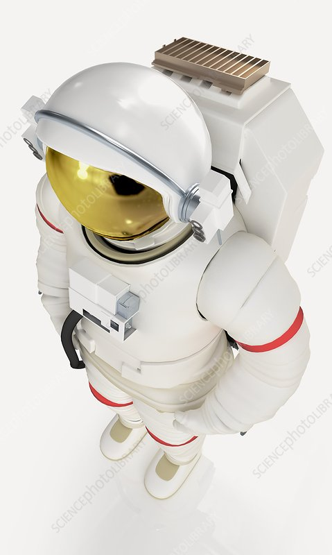 Model of astronaut in spacesuit