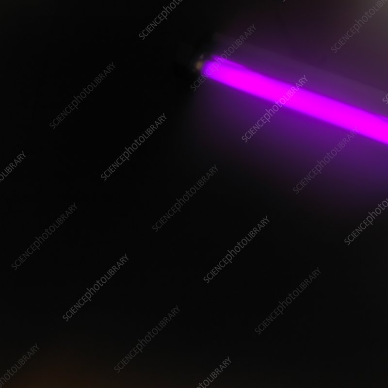 Pink tube light glowing against black