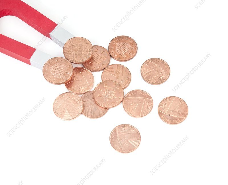 Coins attracted by horseshoe magnet