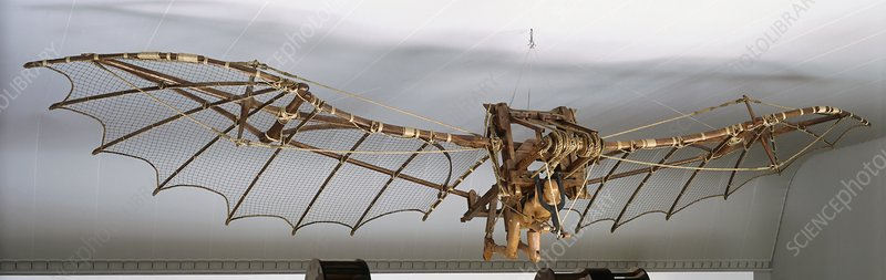 Ornithopter, front view