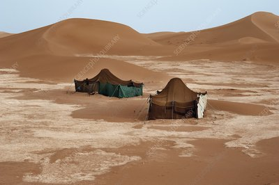 Bedouin tents and sand dunes