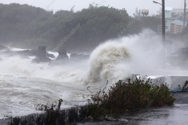 Coastal wave during Typhoon Usagi
