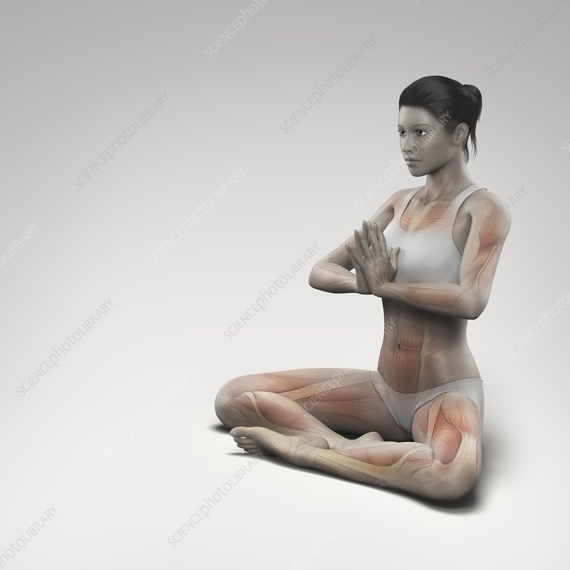 Yoga Meditation Pose, artwork