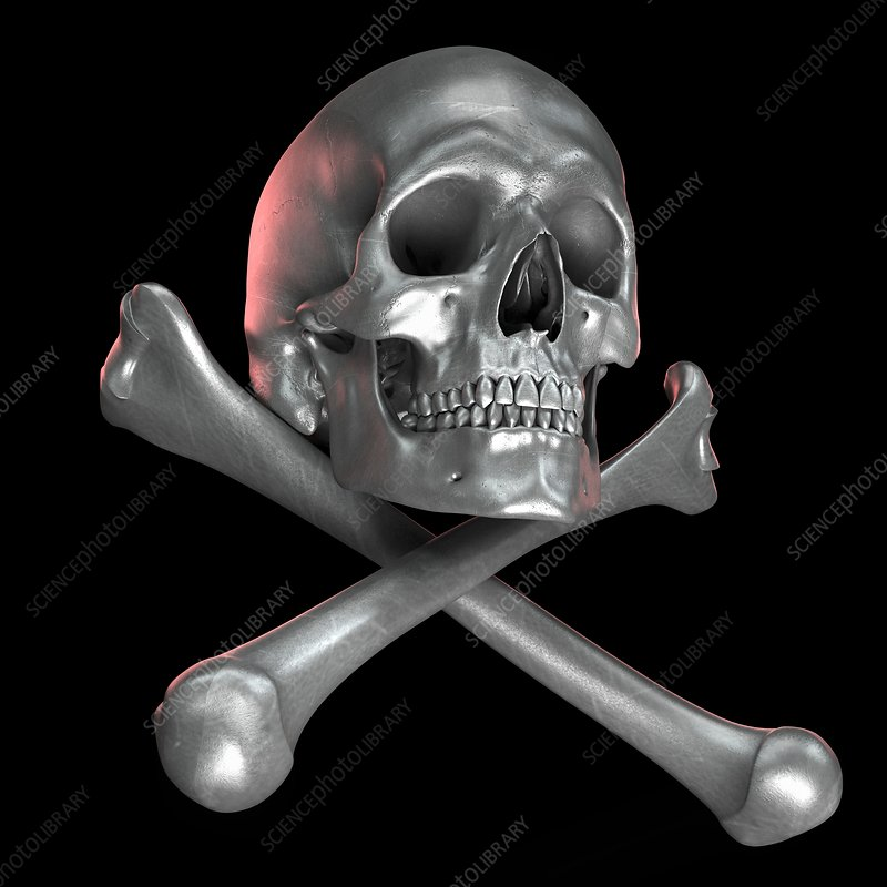 Skull and Crossbones, artwork