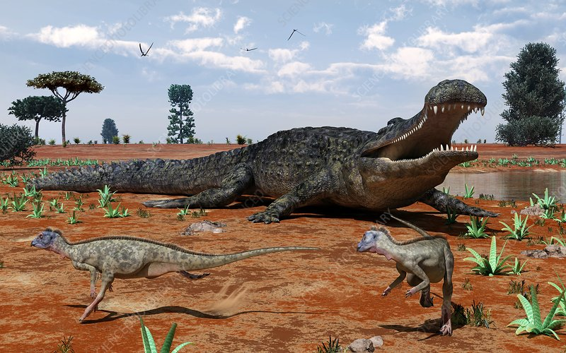 Sarcosuchus and Ornithopoda, artwork