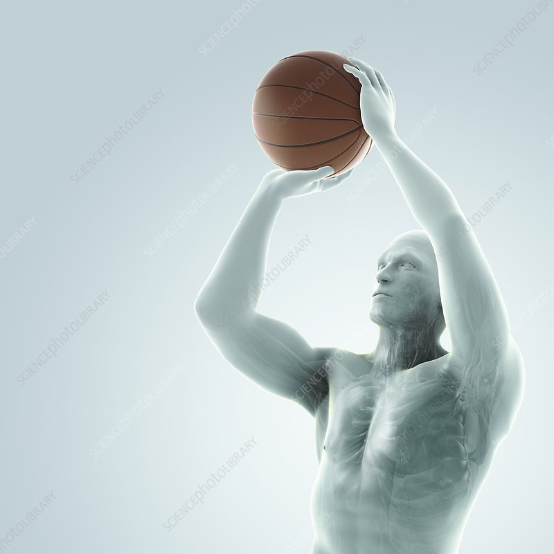 Basketball Shot, artwork