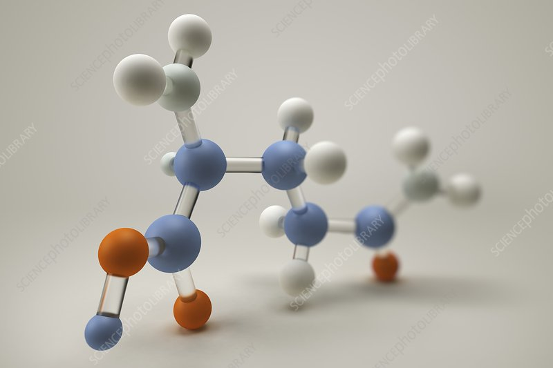 Glutamine Molecule, artwork