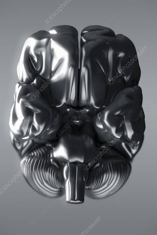 Metallic Brain, artwork